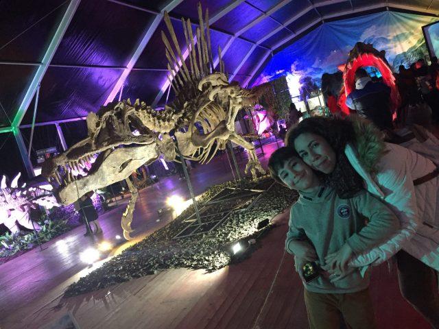 Fósil de la exposición Dino XXL